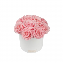 BOUQUET WITH 11 ROSES - WHITE CERAMIC POT WITH BRIDAL PINK ROSES