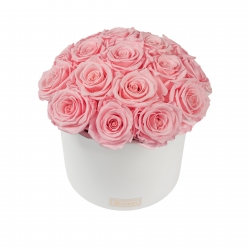 BOUQUET WITH 17 ROSES - WHITE CERAMIC POT WITH BRIDAL PINK ROSES