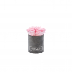 XS BLUMMIN - DARK GREY VELVET BOX WITH BRIDAL PINK ROSES
