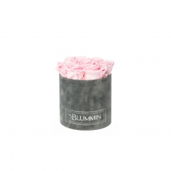 SMALL BLUMMiN - DARK GREY VELVET BOX WITH BRIDAL PINK ROSES