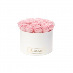LARGE BLUMMIN - WHITE BOX WITH BRIDAL PINK ROSES