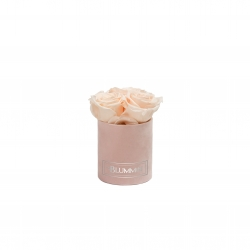 XS BLUMMiN - LIGHT PINK VELVET BOX WITH ICE PINK ROSES