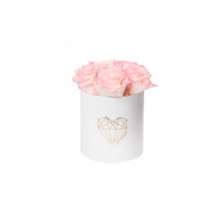 MIDI LOVE - WHITE VELVET BOX WITH LOVELY PINK ROSES