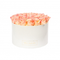 EXTRA LARGE WHITE LEATHER BOX WITH APRICOT ROSES