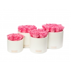 WHITE CERAMIC POT WITH  BABY PINK ROSES