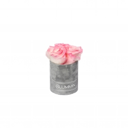 XS LIGHT GREY VELVET BOX WITH LOVELY PINK ROSES