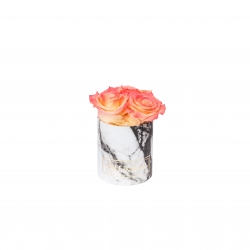 XS WHITE MARBLE BOX WITH APRICOT ROSES