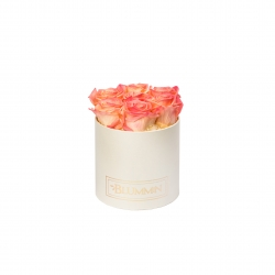 SMALL CREAMY BOX WITH APRICOT ROSES