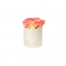 BLUMMIN - kreemikasvalge karp 5 APRICOT roosidega