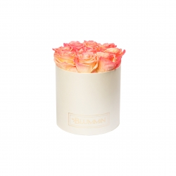 MEDIUM CREAMY BOX WITH APRICOT ROSES