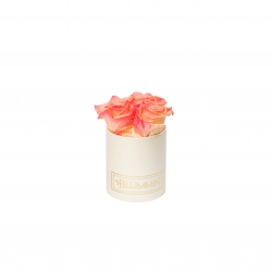 XS BLUMMiN - CREAMY BOX WITH APRICOT ROSES