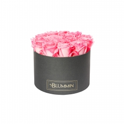 LARGE DARK GREY BOX WITH CANDY PINK ROSES