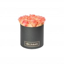 MEDIUM BLUMMiN - tumehall karp APRICOT roosidega