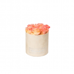 SMALL NUDE VELVET BOX WITH APRICOT ROSES