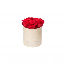 BLUMMIN MIDI NUDE VELVET BOX WITH 5 VIBRANT RED ROSES