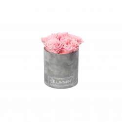 MIDI BLUMMIN - LIGHT GREY VELVET BOX WITH BRIDAL PINK ROSES