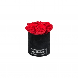 BLUMMIN MIDI BLACK VELVET BOX WITH 5 VIBRANT RED ROSES