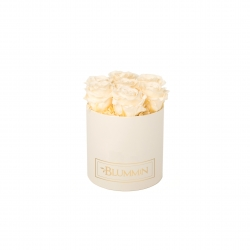 SMALL BLUMMIN CREAM WHITE BOX WITH CHAMPAGNE ROSES