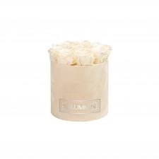 MEDIUM BLUMMiN - NUDE VELVET BOX WITH PEARL CHAMPAGNE ROSES