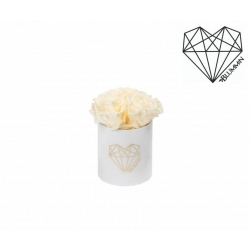 LOVE XS BLUMMIN WHITE VELVET BOX WITH CHAMPAGNE ROSES