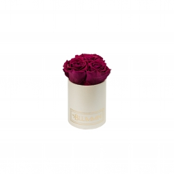 XS BLUMMIN - CREAMY BOX WITH ROSEBERRY ROSES