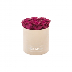 MEDIUM BLUMMiN - NUDE VELVET BOX WITH CHERRY LADY ROSES