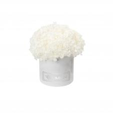 SMALL BLUMMiN -  valge sametkarp stabiliseeritud valge hortensiaga