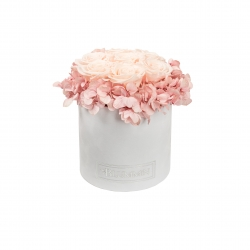 MEDIUM WHITE VELVET BOX WITH LIGHT PINK HORTENSIA AND 7 ICE PINK ROSES