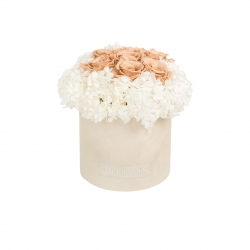 MEDIUM NUDE VELVET BOX WITH WHITE HORTENSIA AND 7 CAPPUCCINO ROSES