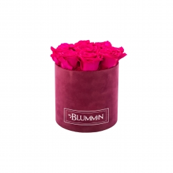 MEDIUM BLUMMiN - FUKSIA SAMETKARP HOT PINK ROOSIDEGA