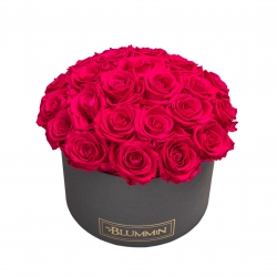 BOUQUET  WITH 25 ROSES - LARGE BLUMMIN DARK GREY BOX WITH HOT PINK ROSES