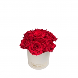 BOUQUET WITH 7 ROSES - MIDI BLUMMiN CREAMY BOX WITH VIBRANT RED ROSES