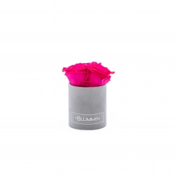 XS BLUMMIN - LIGHT GREY VELVET BOX WITH HOT PINK ROSES