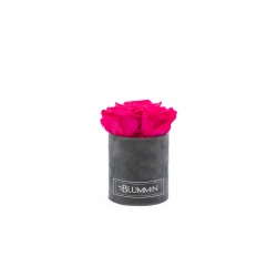 XS BLUMMIN - DARK GREY VELVET BOX WITH HOT PINK ROSES