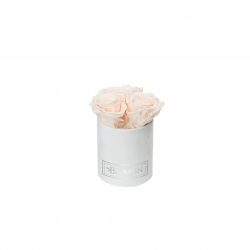 XS BLUMMiN - WHITE VELVET BOX WITH ICE PINK ROSES