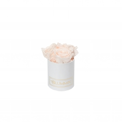 XS BLUMMiN - WHITE BOX WITH ICE PINK ROSES