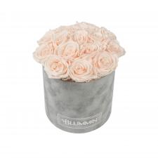BOUQUET WITH 15 ROSES - MEDIUM BLUMMIN LIGHT GREY VELVET BOX WITH ICE PINK ROSES