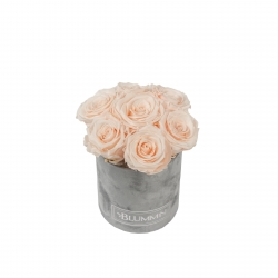 BOUQUET WITH 7 ROSES - MIDI LIGHT GREY VELVET BOX WITH ICE PINK ROSES