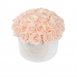 BOUQUET WITH 25 ROSES - LARGE LOVE WHITE VELVET BOX WITH ICE PINK ROSES