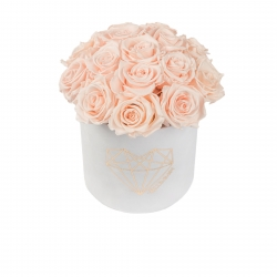 BOUQUET WITH 15 ROSES - MEDIUM LOVE WHITE VELVET BOX WITH ICE PINK ROSES