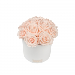 BOUQUET WITH 11 ROSES - WHITE CERAMIC POT WITH ICE PINK ROSES