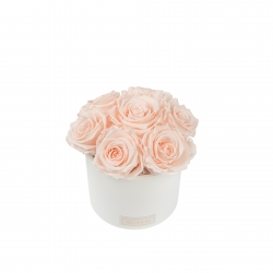 BOUQUET WITH 7 ROSES - WHITE CERAMIC POT WITH ICE PINK ROSES