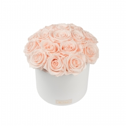 BOUQUET WITH 15 ROSES - WHITE CERAMIC POT WITH ICE PINK ROSES