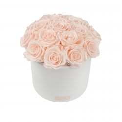 BOUQUET WITH 17 ROSES - WHITE CERAMIC POT WITH ICE PINK ROSES