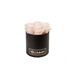 SMALL BLACK BOX WITH ICE PINK ROSES