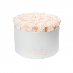 EXTRA LARGE WHITE BOX WITH ICE PINK ROSES