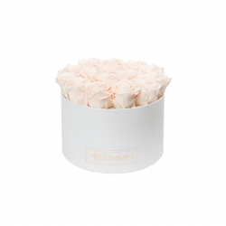 LARGE BLUMMiN - WHITE BOX WITH ICE PINK ROSES
