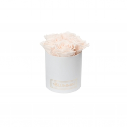 MIDI WHITE BOX WITH ICE PINK ROSES