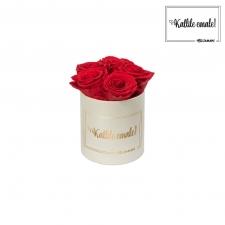 KALLILE EMALE - MIDI KREEMIKASVALGE KARP VIBRANT RED ROOSIDEGA