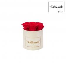KALLILE EMALE - SMALL KREEMIKASVALGE KARP VIBRANT RED ROOSIDEGA